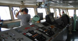 Ακαδημίες Εμπορικού Ναυτικού: Με σταθερά επίπεδα εισαχθέντων