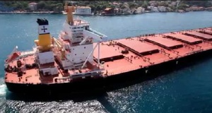 Diana: Αγοράζει τρία Panamax με ευνοϊκούς όρους