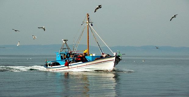 Απαγόρευση αλιείας σε περιοχές αρμοδιότητας Λιμεναρχείου Σαρωνικού